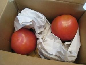 トマト小箱開封時