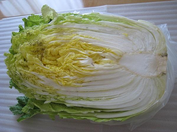 2014年3月14日白菜