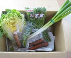 2014年3月14日野菜一覧