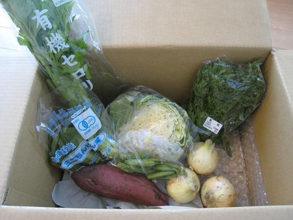 2014年3月21日野菜一覧
