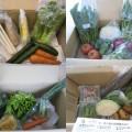 2014年6月の宅配野菜一覧