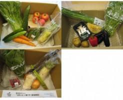 2014年8月着の宅配野菜