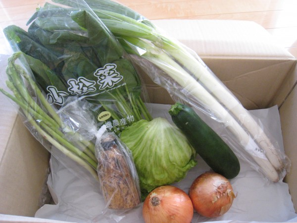 2014年9月26日野菜一覧