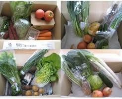 2014年9月着野菜一覧