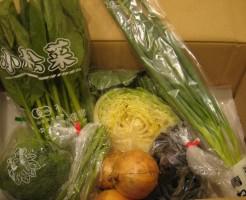 2014年10月10日野菜一覧