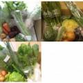 2014年10月に届いた野菜