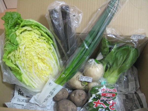 2015年1月29日野菜一覧