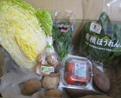 2015年2月3週野菜一覧