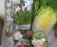2015年3月2週野菜一覧