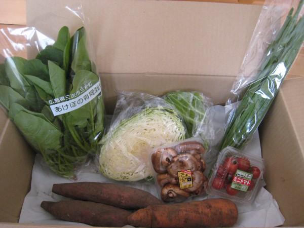 2015年3月4週野菜一覧