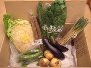 2015年4月9日着野菜一覧