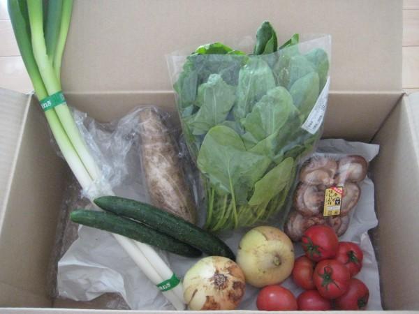 4月3週野菜一覧