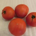 トマト 6月3週