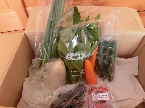 7月4週野菜一覧
