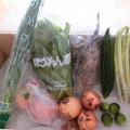8月4週野菜一覧