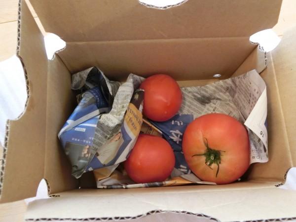 小箱トマト