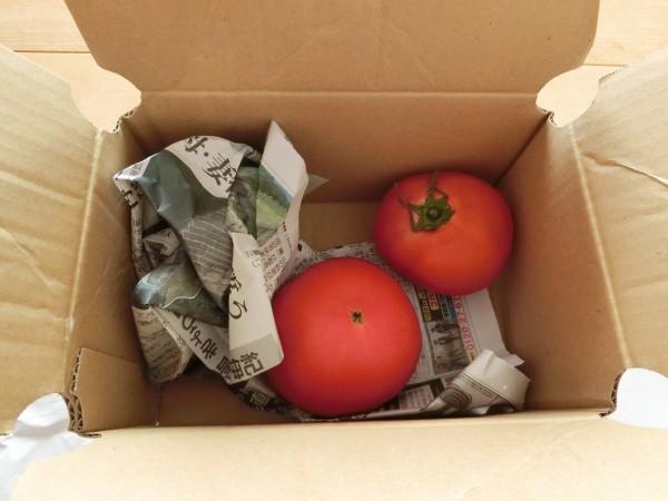 トマト 小箱