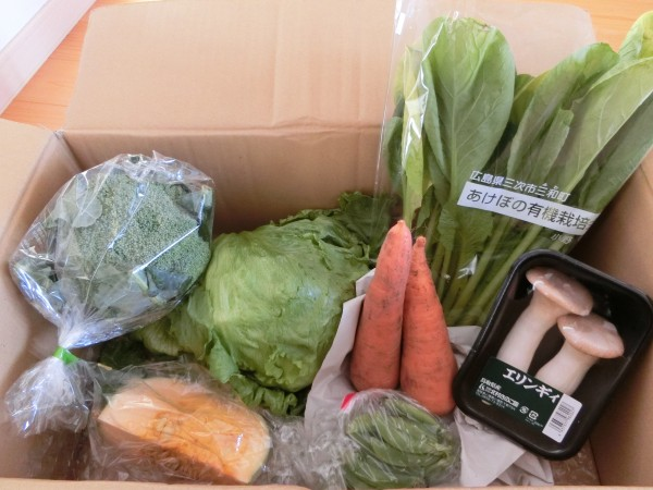 11月3週野菜一覧