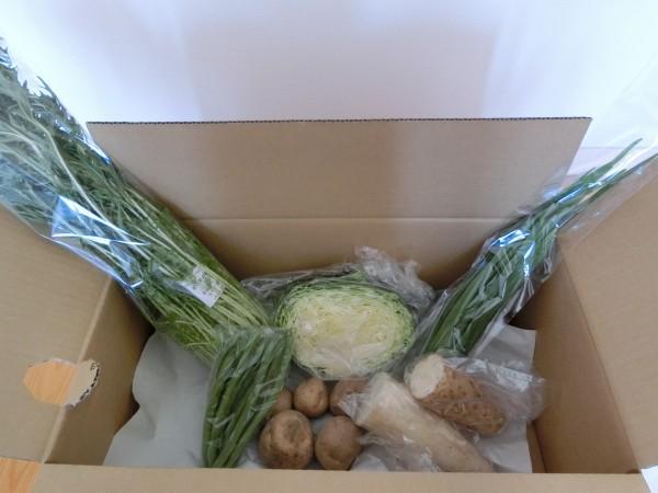 3月3日野菜一覧