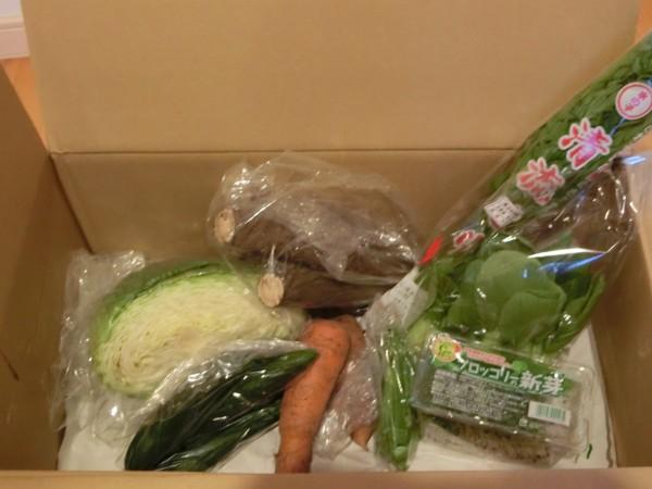 3月31日野菜一覧