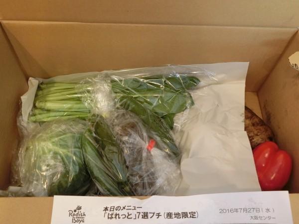 今週届いた野菜