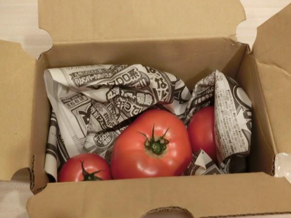 トマト小箱梱包